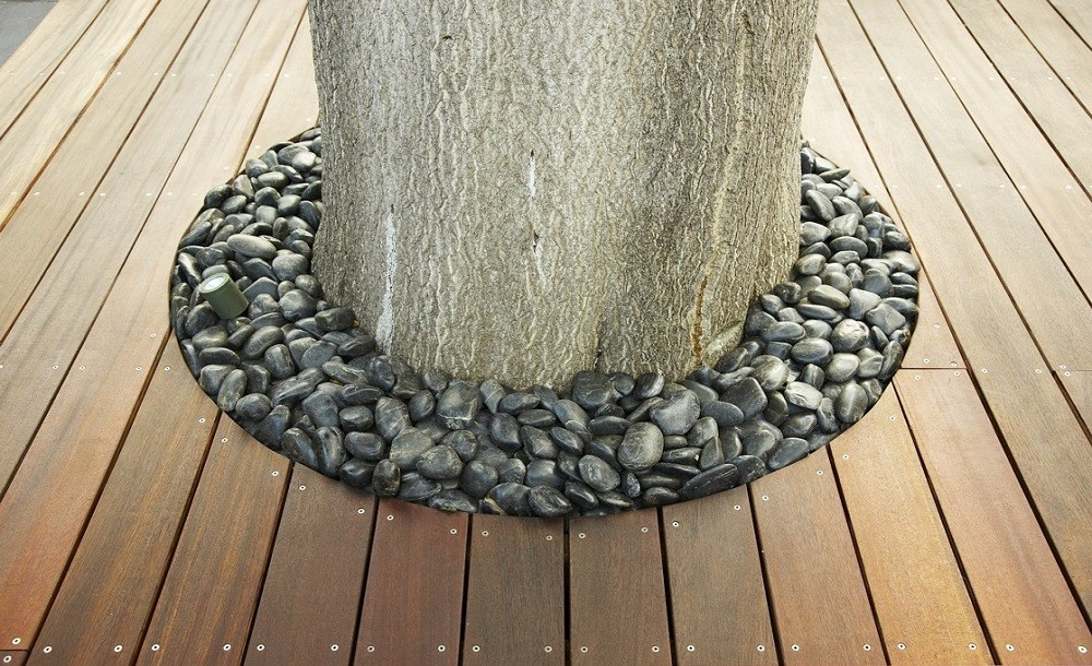 Tree and deck detail