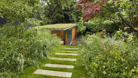 Biophilic garden office with green roof