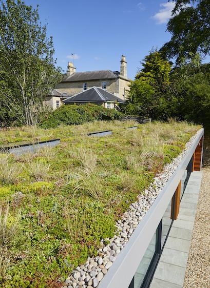 Garden room sedum roof